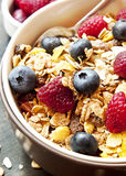 Muesli with Berries for Breakfast Stock Image