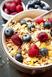 Muesli with Berries for Breakfast Stock Images