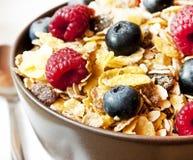 Muesli with Berries CLoseup Stock Image