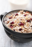Muesli with berries and milk Royalty Free Stock Image