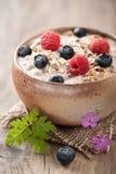 Muesli with berries Royalty Free Stock Image