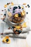 Muesli with blueberry Royalty Free Stock Photo