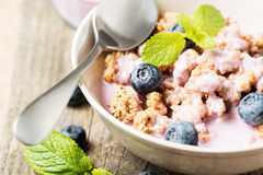 Muesli with blueberry and mint close up Stock Photography