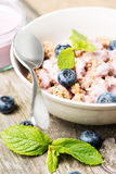 Muesli with blueberry and mint close up vertical Stock Images