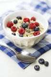 Muesli. Bowl with oatflakes,raisins,fruits and yoghurt, Selective focus Stock Photo