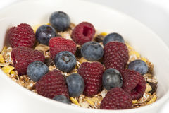 Muesli com frutas frescas Fotos de Stock Royalty Free