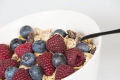 Muesli com frutas frescas Imagens de Stock Royalty Free
