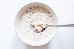 Muesli com leite Imagem de Stock