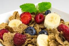 Muesli con la frutta Fotografia Stock Libera da Diritti