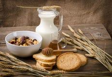 Muesli con latte e fetta biscottata Fotografie Stock Libere da Diritti