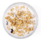 By muesli in a cup, it is isolated. Muesli in a cup filled in with the yogurt, healthy food Stock Images