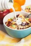 Muesli del cereal con frutos secos Fotografía de archivo libre de regalías