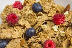 Muesli della prima colazione con i mirtilli Fotografia Stock Libera da Diritti