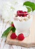 Muesli Dessert Royalty Free Stock Photography