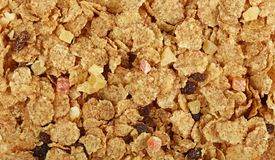 Muesli do Granola com frutos secados perto acima Imagem de Stock