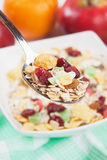 Muesli with dried fruit Royalty Free Stock Images