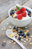 Muesli with fresh berries Royalty Free Stock Photos