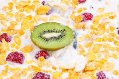Muesli and fresh berries and fruits kiwi. Close up Stock Photography