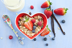 Muesli with fresh berries Stock Photography