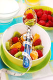 Muesli with fresh fruits as diet food Stock Images