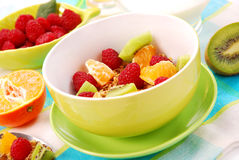 Muesli with fresh fruits as diet food royalty free stock photography