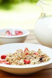 Muesli with fresh fruits as diet food Royalty Free Stock Photos