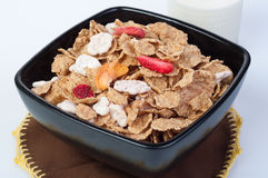 Muesli with fresh fruits Stock Image