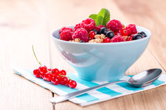Muesli with fresh fruits. Stock Images