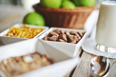 Muesli, fresh milk and apples with beautiful bokeh Stock Photography