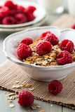 Muesli with fresh raspberries and dried fruits Royalty Free Stock Photos