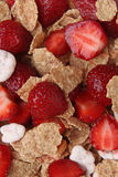 Muesli with fresh strawberries Stock Photography
