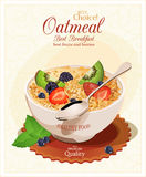 Muesli with fruit and berries. Stock Photography