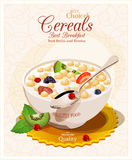 Muesli with fruit and berries. Royalty Free Stock Photo