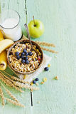 Muesli with  fruit Royalty Free Stock Photography