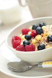 Muesli with fruits Royalty Free Stock Photography
