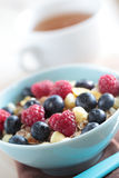 Muesli with fruits Royalty Free Stock Photos
