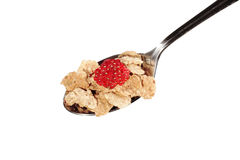 Muesli with fruits on a spoon Stock Image