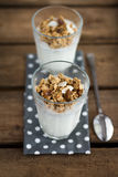 Muesli in Glass Royalty Free Stock Photo
