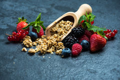 Muesli granola nad fresh ripe berries Royalty Free Stock Photo