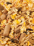 Muesli for horse background. close up Royalty Free Stock Images
