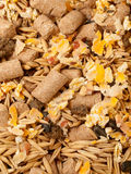 Muesli for horse background. close up Stock Images