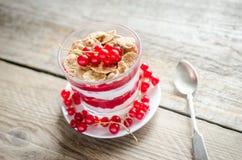 Muesli integral con la salsa y el yogur de la baya Imágenes de archivo libres de regalías