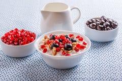 Muesli met Vers Fruit Royalty-vrije Stock Afbeelding