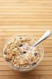 Muesli with milk Stock Images