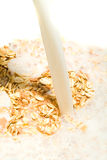 muesli With milk Royalty Free Stock Photography
