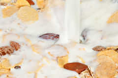 Muesli and Milk Royalty Free Stock Images