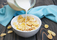 Muesli with milk Royalty Free Stock Photo