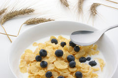 Muesli, milk and blueberries in a white bowl Royalty Free Stock Photos