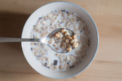 Muesli with milk. Breakfast background, a bowl Muesli with milk Stock Images