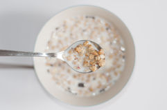 Muesli with milk. Breakfast background, a bowl Muesli with milk Royalty Free Stock Photography